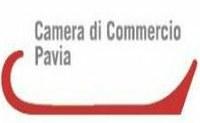 L'arte – pittorica e della calzatura – porta Pavia nel mondo