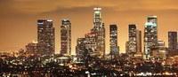 Giovane mantovano ha successo a Los Angeles