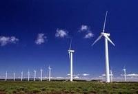 Argentina: potenziale produttore di biocarburanti - biomassa