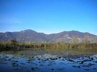 Lombardia: approvate modifiche Riserva Naturale Torbiere del Sebino