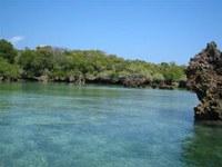 """Zanzibar : l'incanto al ritmo del """"pole pole"""""""