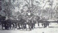 L'emigrazione valtellinese in Australia (1860-1960) nelle lettere degli emigranti – terza parte, lo sviluppo del fenomeno migratorio