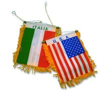 Calcio : USA- Italia   1- 0
