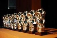 Sport Awards 2011