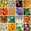 Produrre e consumare cibo: il futuro sistema agroalimentare mondiale