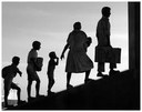 Lingua italiana: cosa sono i migranti?