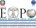 Una riflessione sui progetti internazionali della Società Expo 2015