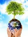 L'imperativo di oggi : Essere amici dell'ambiente naturale