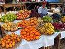 Perù: porte aperte agli OGM?