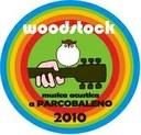 Andrea Fiozzi racconta il concerto Woodstock al Parcobaleno di Mantova