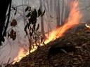 Lecco, 130.000 euro per difendere il territorio dagli incendi boschivi