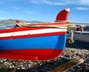 La barca e il feudo