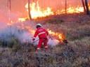Incendi boschivi: Commissione speciale Montagna approva proposta di Risoluzione per prevenire e scongiurare l'emergenza